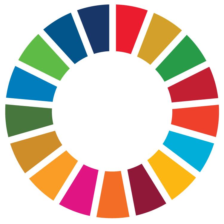 SDG Wheel_WEB